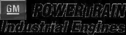 GM POWERTRAIN engine